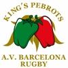 Associació de Veterans de Rugby de Barcelona